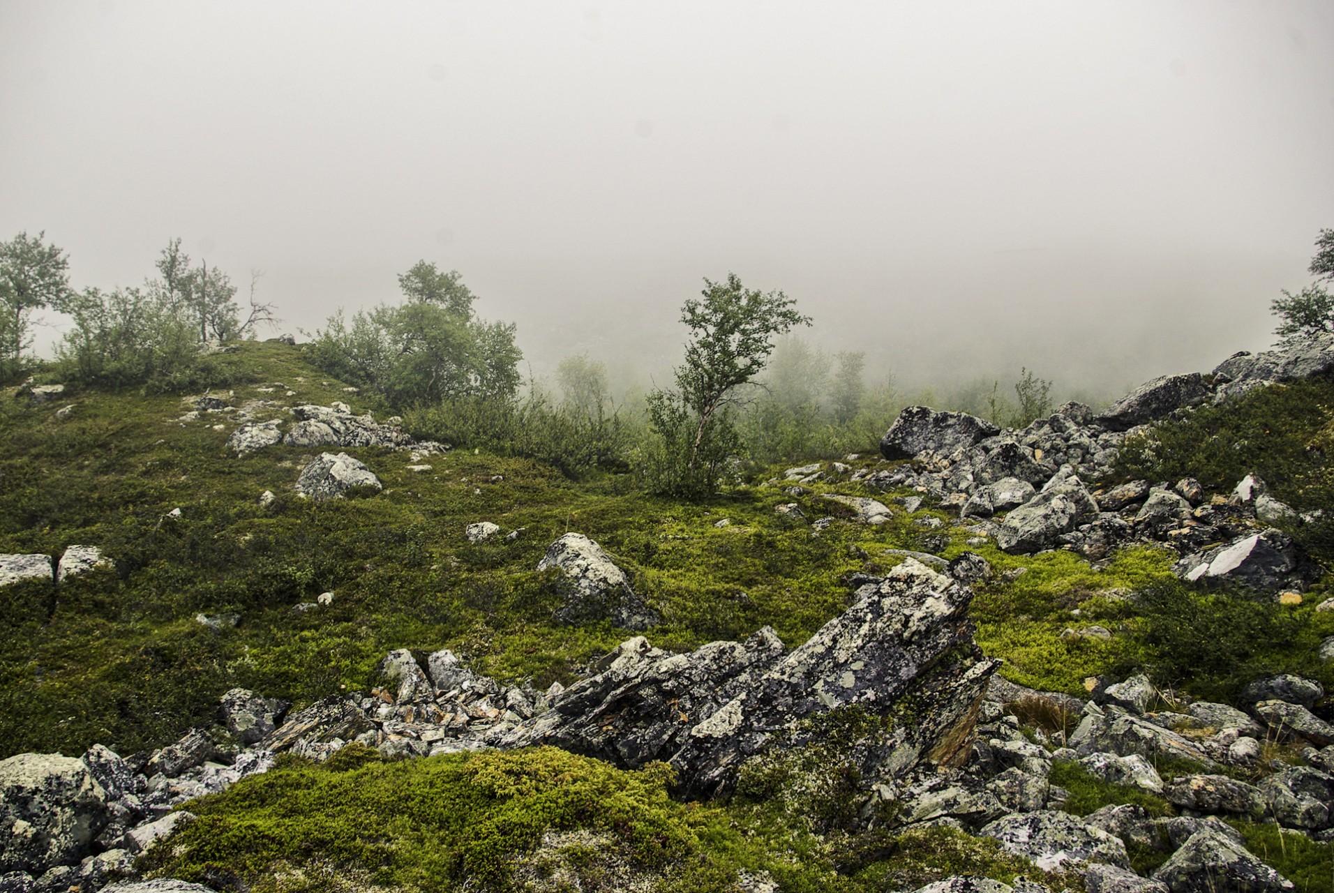 Landscapes-Sverige03