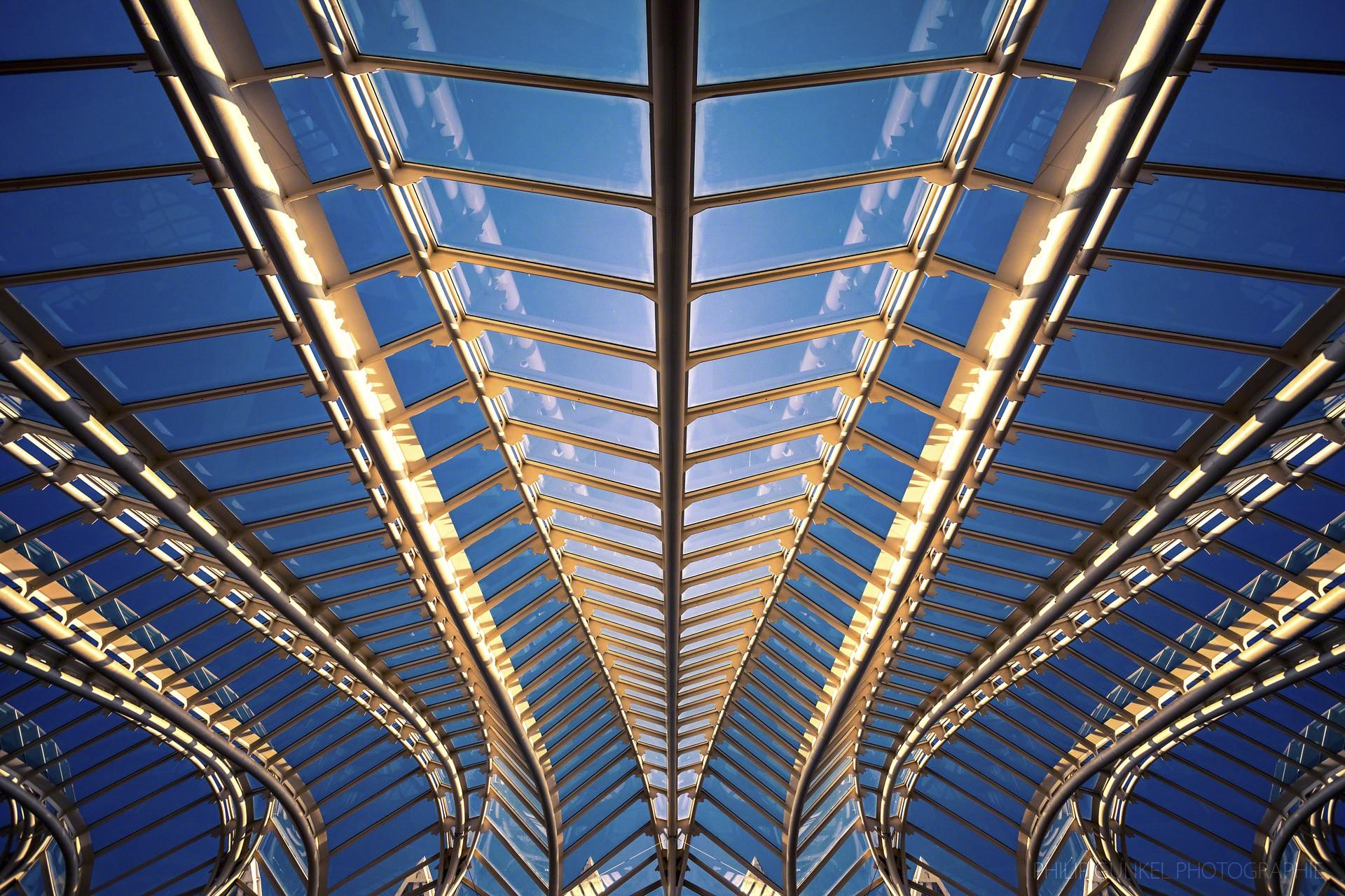 CAS_philip_gunkel_photographie_www.philipgunkel.de-25
