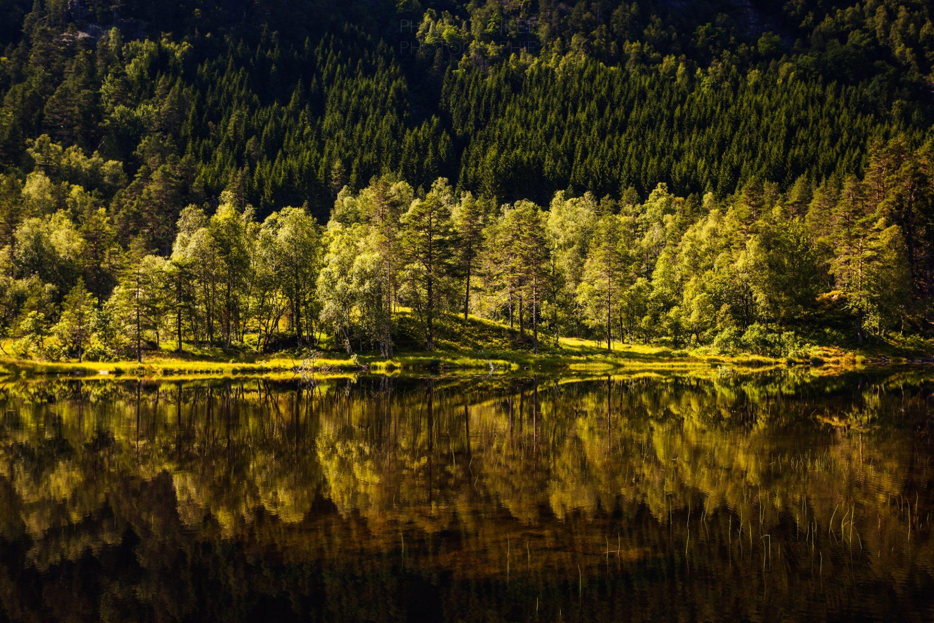 Vestlandet Saga_Philip Gunkel (13 von 35)